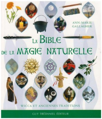 bible magie